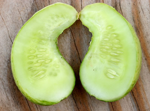 A poorly pollinated cucumber sliced to show seeds